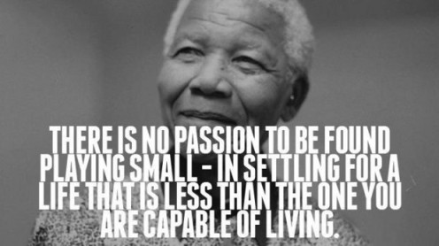mandela no passion